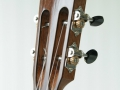 grenosi tenorukulele resonator akazie - head slant view
