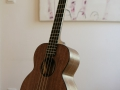 GRENOSI Tenor Ukulele Jumbolele Walnut Ebony SK side
